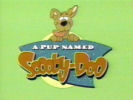 A Pup Named Scooby-Doo intro screen (image from tv-intros.com)
